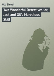 Two Wonderful Detectives: or, Jack and Gil's Marvelous Skill