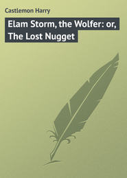 Elam Storm, the Wolfer: or, The Lost Nugget