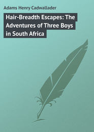Hair-Breadth Escapes: The Adventures of Three Boys in South Africa