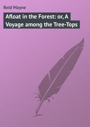 Afloat in the Forest: or, A Voyage among the Tree-Tops