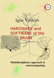 Hardware and software of the brain